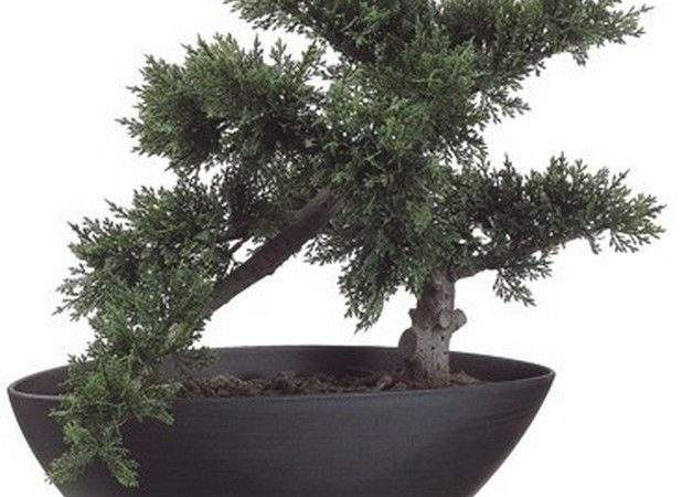 Artificial Bonsai Tree Plant Topiary Outdoor