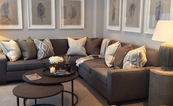 Best Living Room Layouts Ideas Pinterest