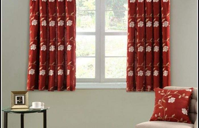 Bright Red Curtains Living Room Home Design
