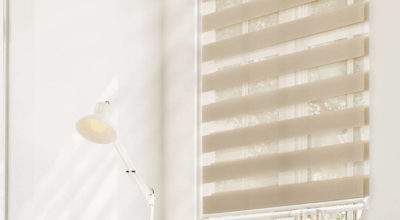 Chicology Stop Cordless Zebra Roller Shade Dual