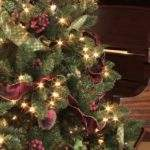 Christmas Tree Decor Ideas Wondrous Pics