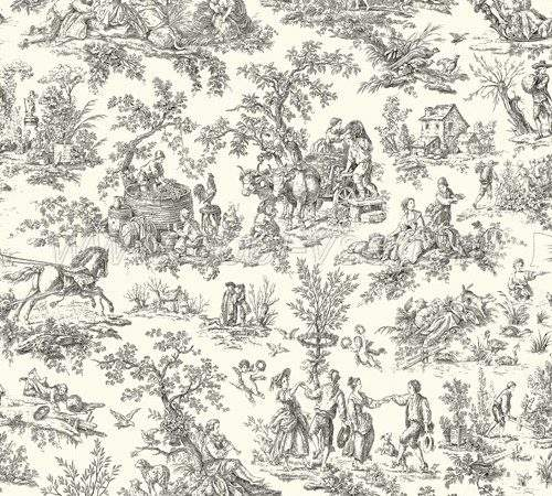Designer French Country Black Off White Toile