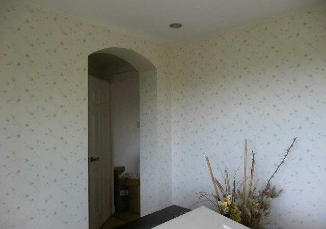 Durable Vinyl Cover Over Paint Leveriza Pasay City
