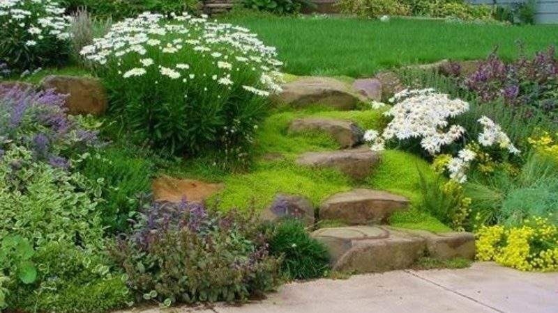 Easy Landscaping Ideas Design Bookmark