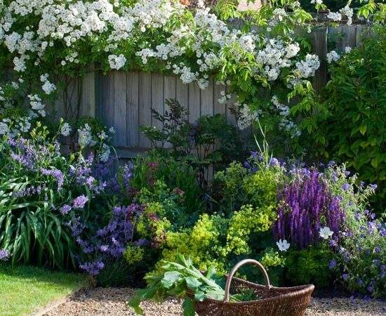 English Country Garden