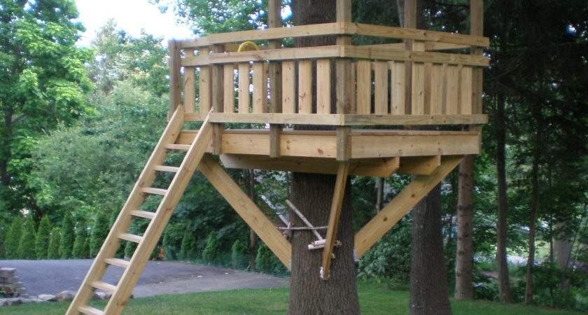 Extraordinary Tree House Plans Kids Remodel