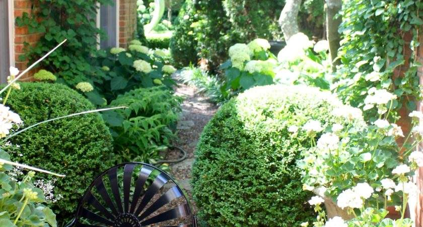 Five Great Garden Ideas