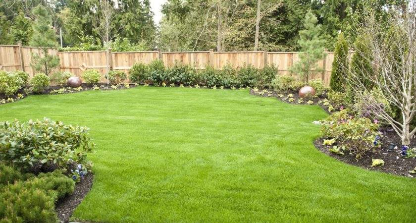 Garden Backyard Wordreference Forums