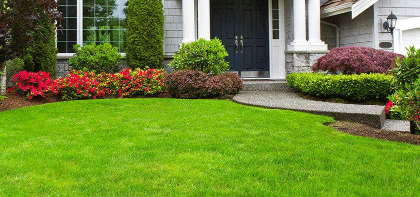 Green Landscaping Victoria Gardening Services