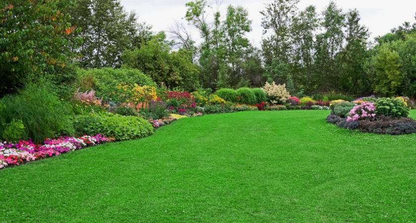 Lawn Maintenance Landscaping Services
