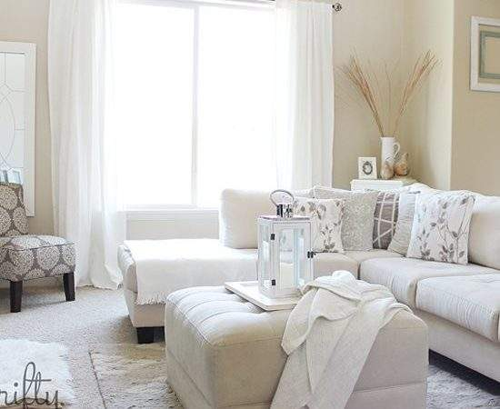 Light Colored Living Rooms Home Design
