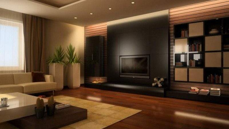 Living Room Color Combination Brown Make
