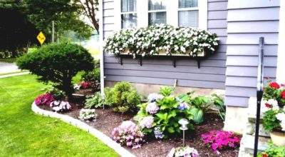 Lovely Landscape Ideas Front House Photos Cool