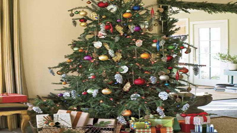 Miscellaneous Country Living Christmas Trees