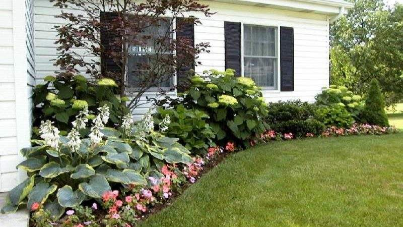 Plants Landscaping Ideas Front Ranch Style House
