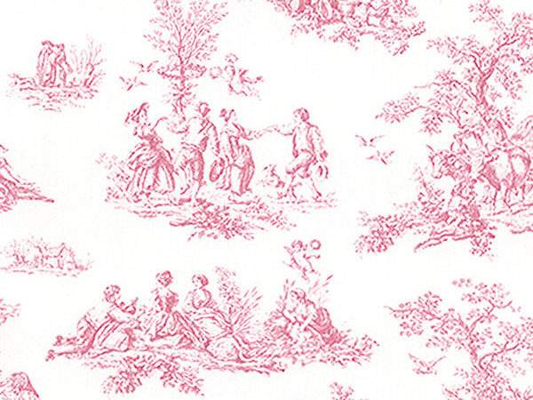 Pretty Prints Pink French Country Side Toile