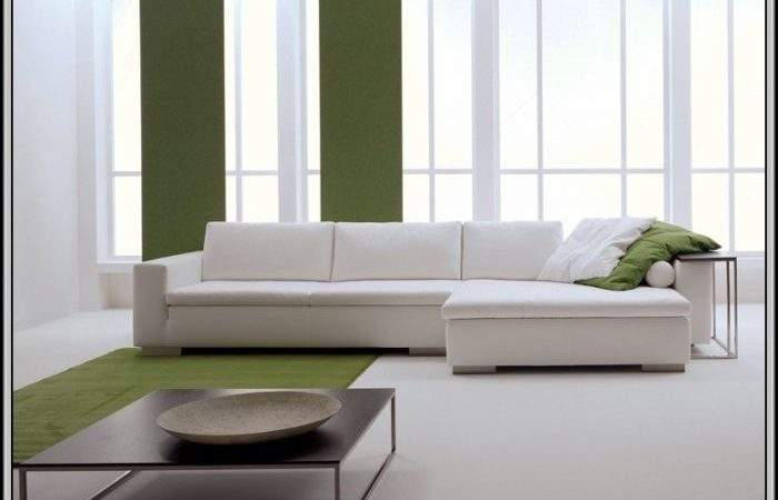 Shaped Couches Couch Living Room Ideas