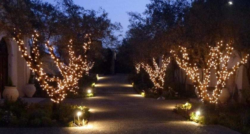 Traditional Filament Bulb Driveway Fairy Lights Cannes