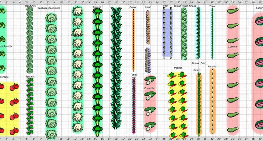 Vegetable Garden Layout Planner Newest Home Lansdscaping