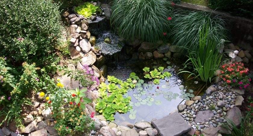 Very Small Backyard Pond Surrounded Stone