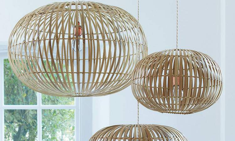 Why Should Consider Bamboo Your Home