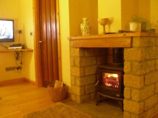 Wood Burning Stove Living Room Dalby