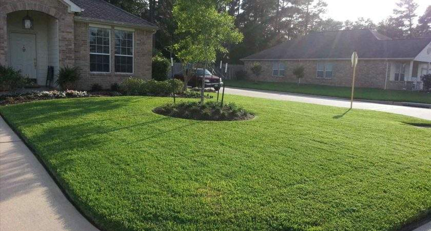 Yard Landscaping Townhouse Small Front Ideas Photos Sketch