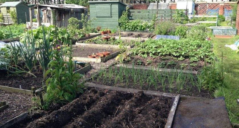 Your Complete Guide Maintaining Successful Allotment